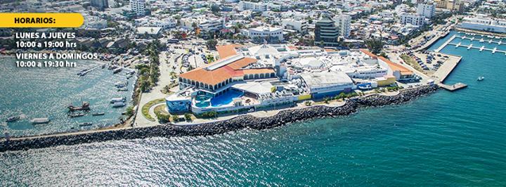 Acuario de Veracruz (Sitio Oficial) cover