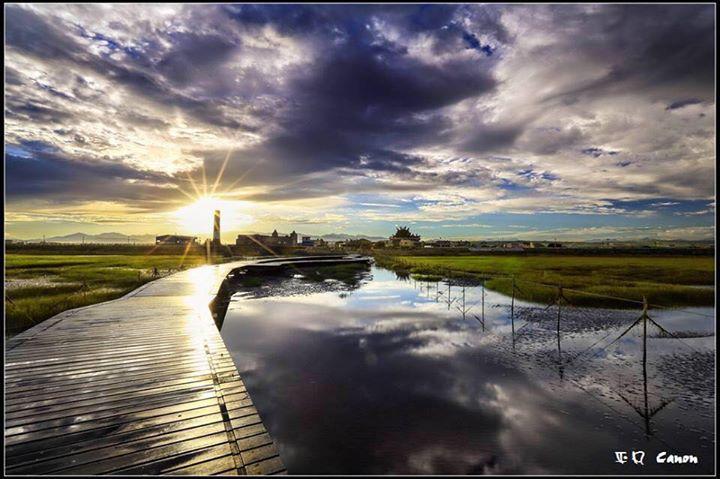 高美濕地 Gaomei Wetland cover