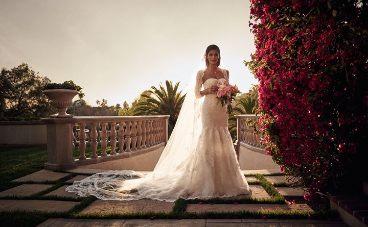 David's Bridal cover