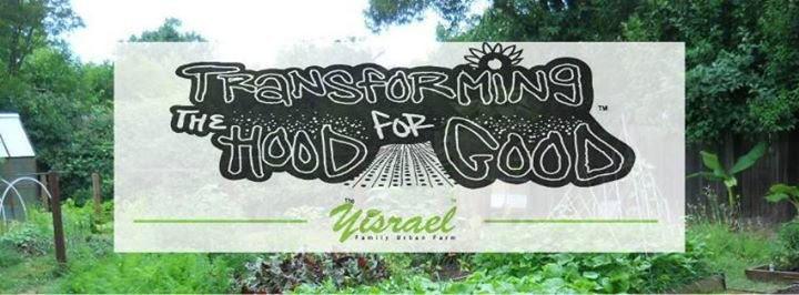 The Yisrael Family Farm cover