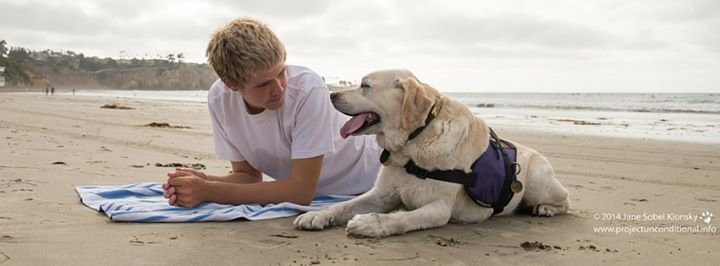 Tender Loving Canines Assistance Dogs, Inc. (TLCAD) cover