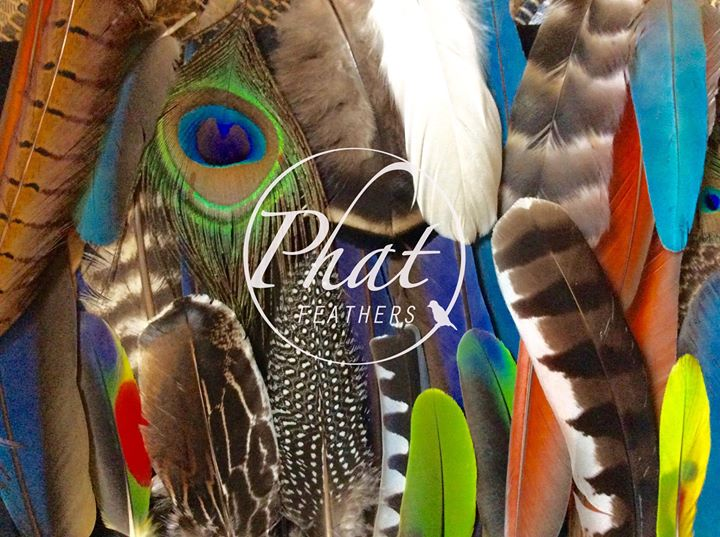 Phat Feathers cover