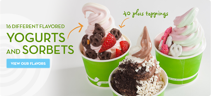 consumer analysis on frozen yogurt Consumer behavior analysis on frozen yogurt december 5, 2011 contents i foreword ii objectives of the study iii methodology iv principal findings and application of theories.
