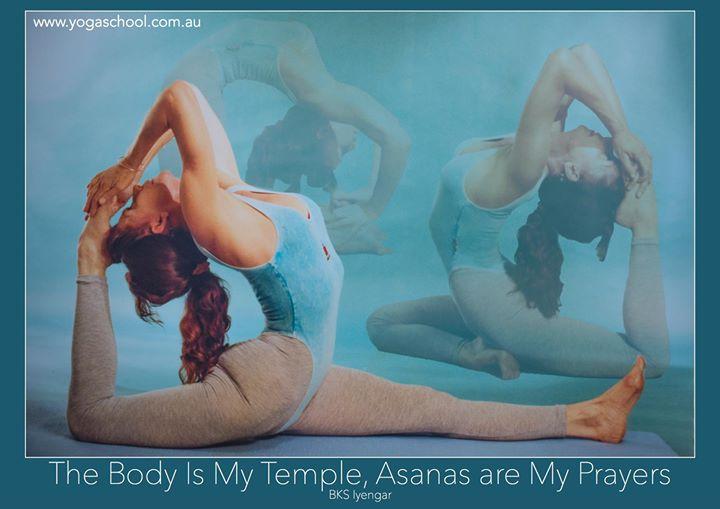 Gold Coast School of Iyengar Yoga cover