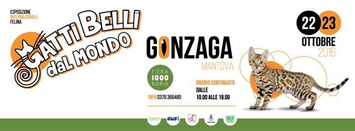 Fiera Millenaria Di Gonzaga cover