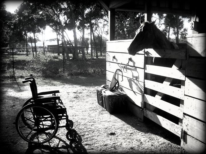 Saddle Up Riding Club, Inc. cover