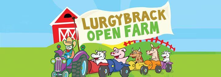 LURGYBRACK OPEN FARM cover