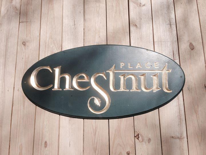Chestnut Place Hallmark cover