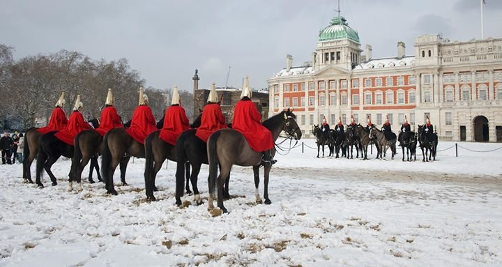 Household Cavalry Foundation cover