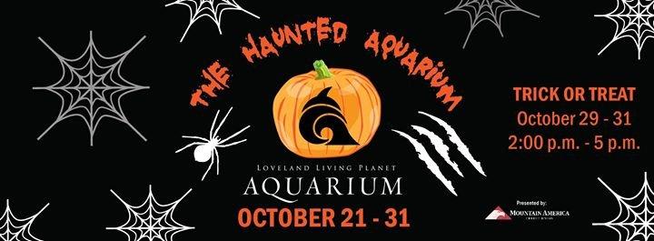The Living Planet Aquarium cover