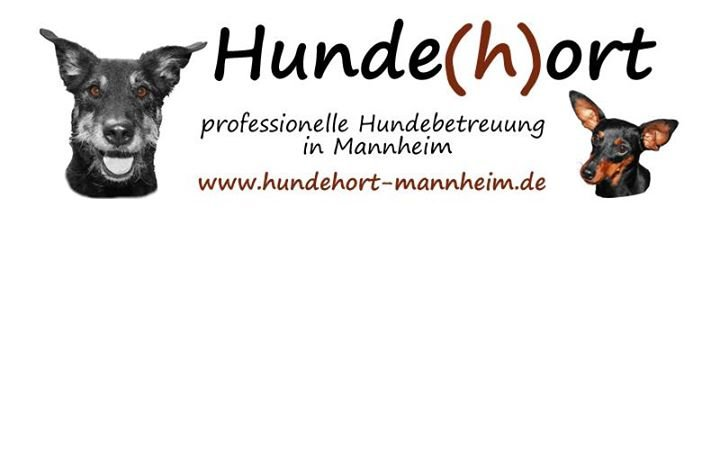 Hunde(h)ort Mannheim cover