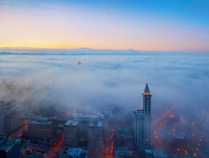 Smith Tower cover