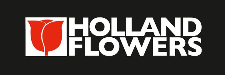 Holland Flowers Marbella cover