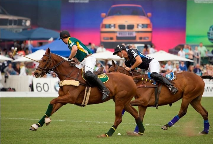 South African Polo Association cover