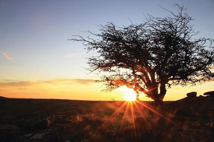 Enjoy Dartmoor cover