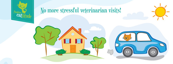 VCA Woodland East Animal Hospital cover
