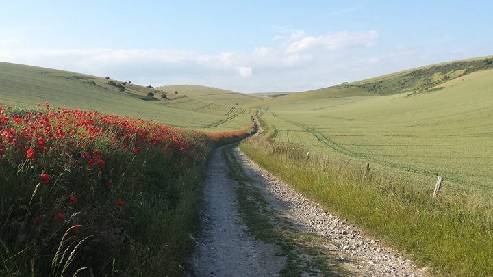 South Downs National Park Authority (SDNPA) cover