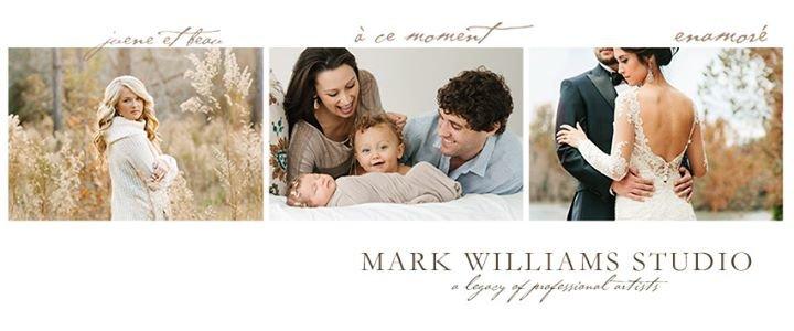 Mark Williams Studio cover