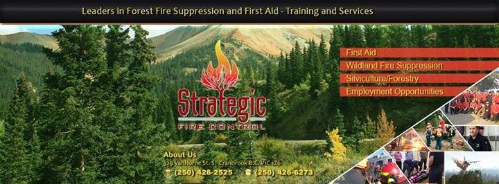 Strategic Fire Control cover
