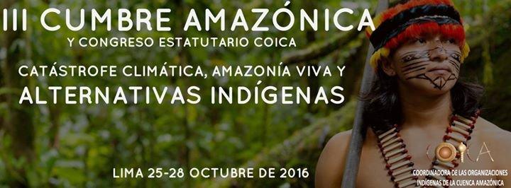 Coica Amazonía cover