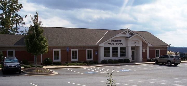 Riverstone Animal Hospital cover