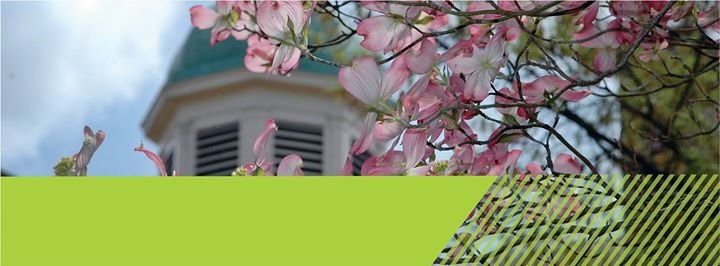 University Career Services at UNC Chapel Hill cover