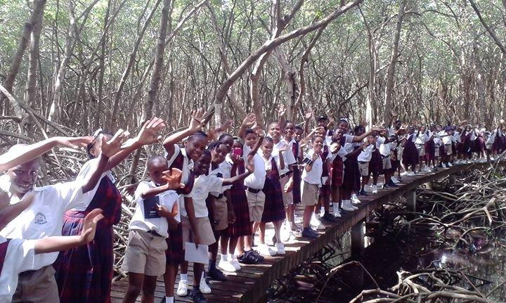 Environment Tobago cover