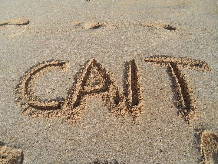 CAIT (Companion Animal Initiative of TN) cover