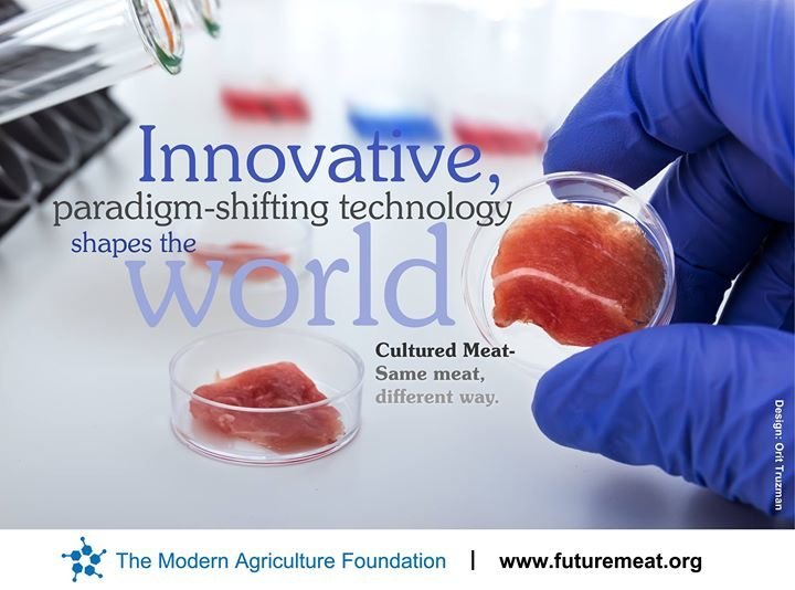 The Modern Agriculture Foundation cover