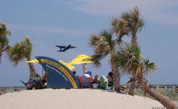 LandShark Landing at the Margaritaville Beach Hotel cover