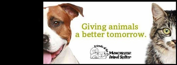 Manchester Animal Shelter cover