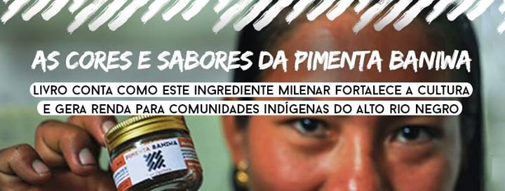 Instituto Socioambiental - ISA cover