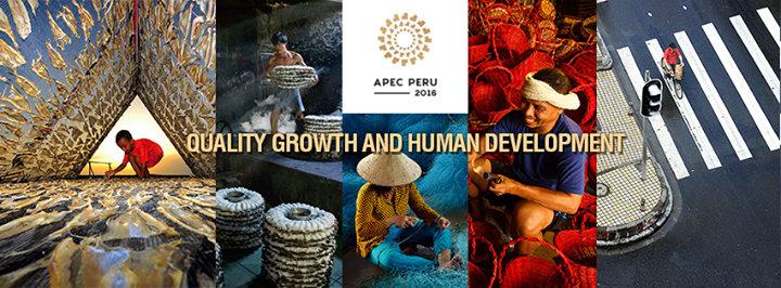 APEC - Asia-Pacific Economic Cooperation cover