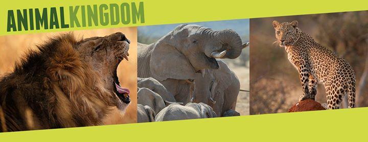 Erindi Private Game Reserve cover