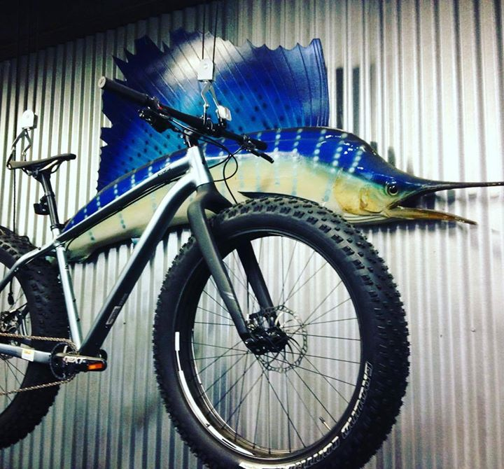 Bayou Bicycles cover