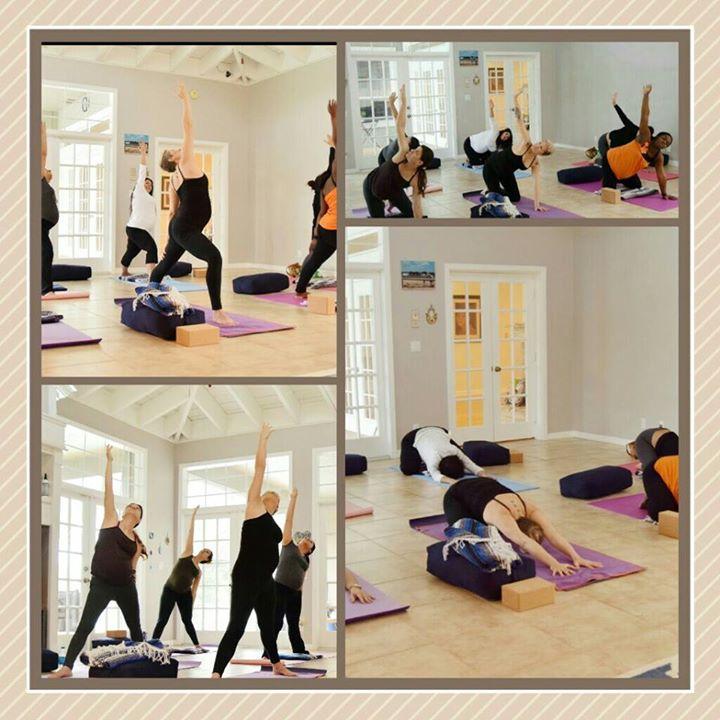 The Yoga Nest FL cover