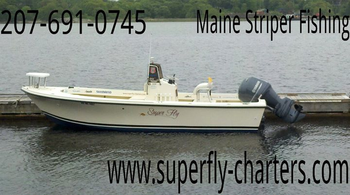 Super Fly Charters: Maine Saltwater Fly & Light Tackle Fishing cover