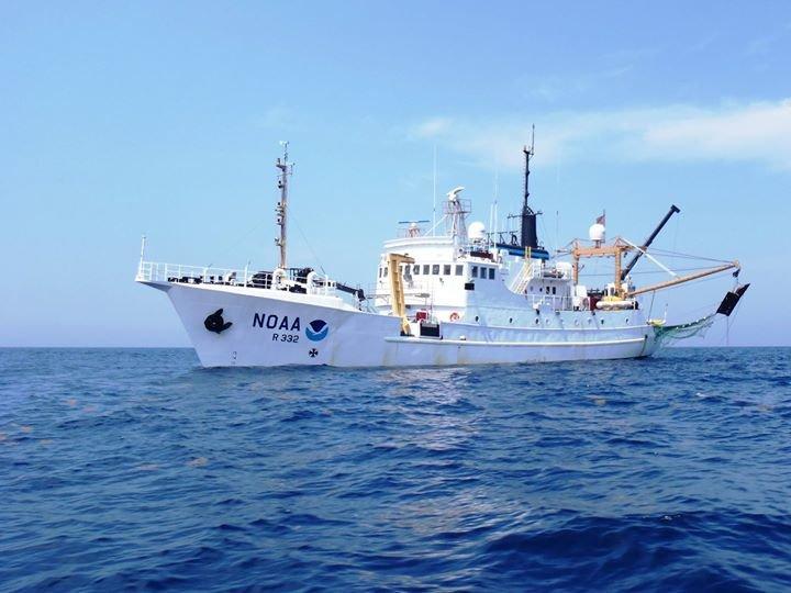 NOAA Ship Oregon II cover