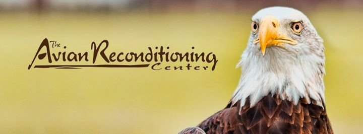 The Avian Reconditioning Center for Birds of Prey cover