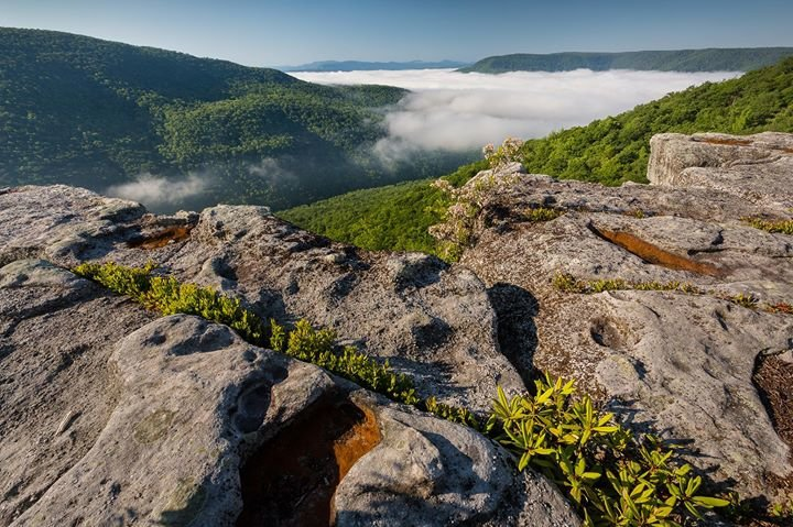 Appalachian Mountain Advocates cover