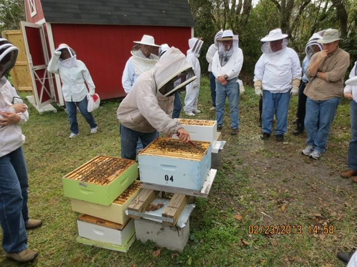 Jacksonville Beekeepers Association cover