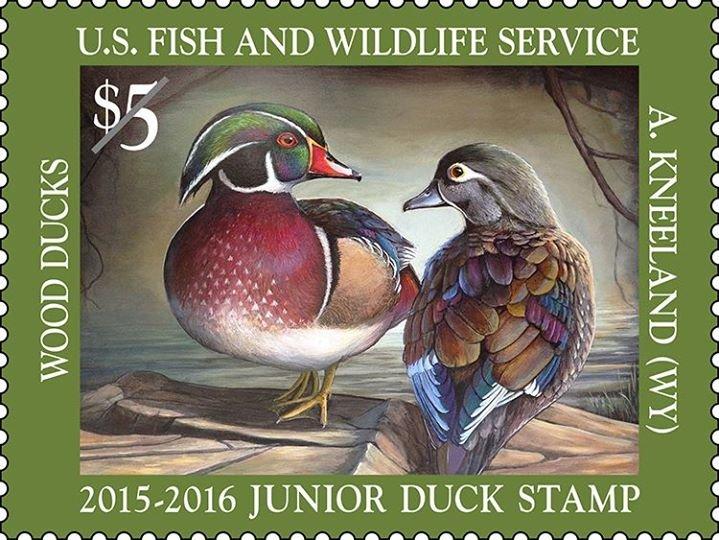 North Dakota Junior Duck Stamp Program cover