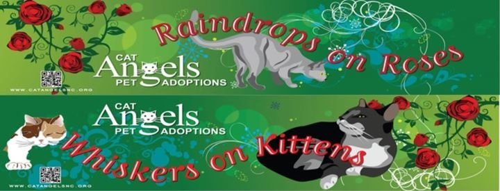 Cat Angels Pet Adoptions cover