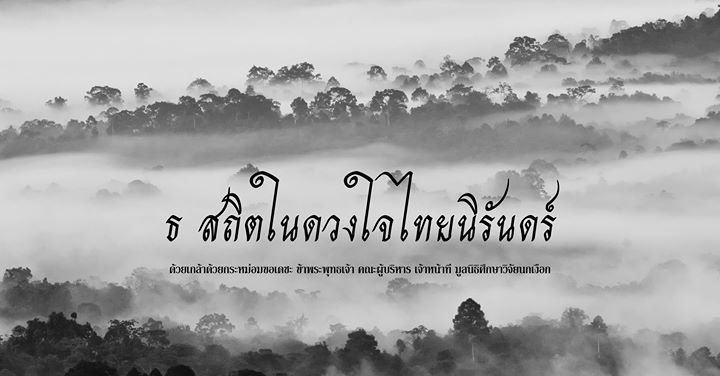 THAILAND HORNBILL PROJECT cover