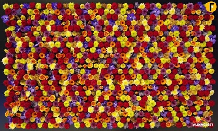 Las flores de Ana cover