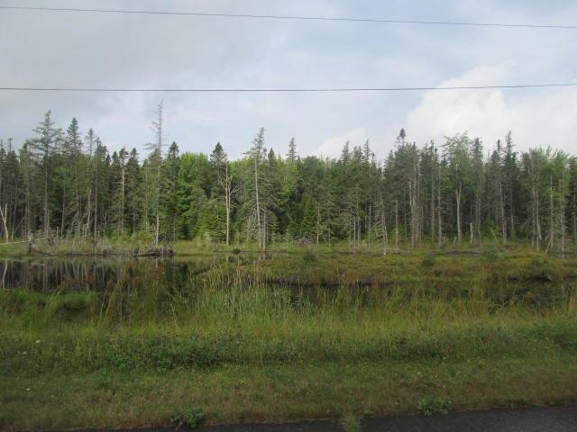 Friends of Aroostook National Wildlife Refuge cover
