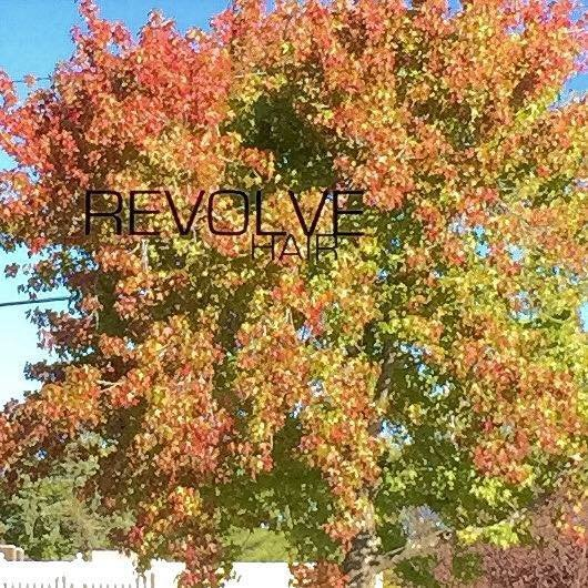 Revolve Hair cover