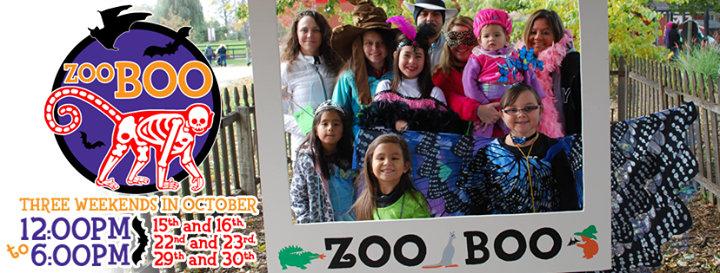 Saginaw Children's Zoo cover