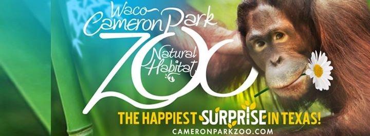 Cameron Park Zoo cover