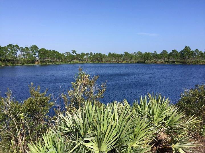 Northeast Everglades Trails Association  (NETA) cover